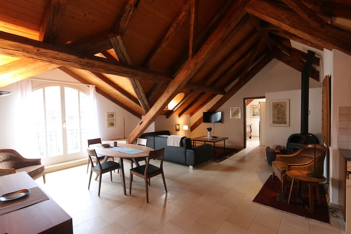 70sqm Attic-Luxury apartment in SPA quarter - Baden - Byt