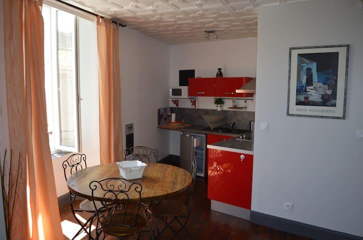 Studio tout équipé dans une belle Vigneronne - Portiragnes - Appartement
