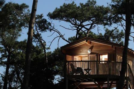 Cabane Tchanquée - Lacanau - Zomerhuis/Cottage