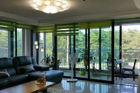창문 너머 소나무 정원이 멋진 SUNI HOUSE 58 - Gangneung-si
