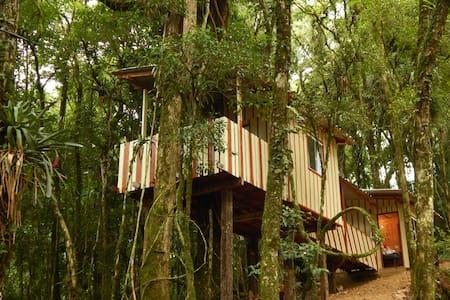 Casa na Árvore - Recanto da Natureza