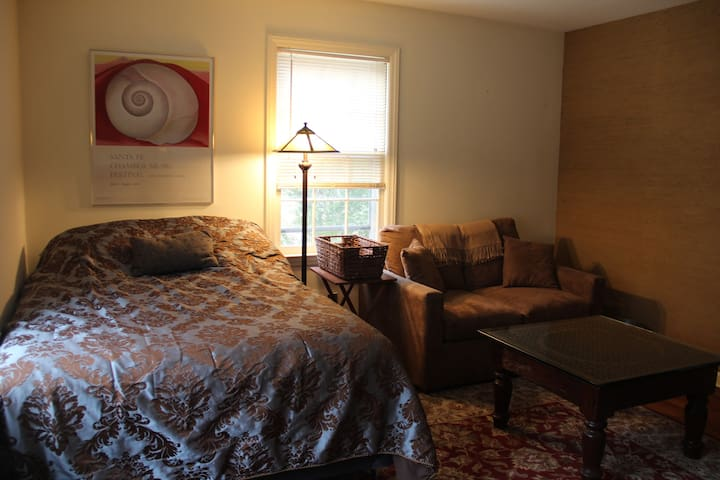 Huge Bedroom with Full Mattress