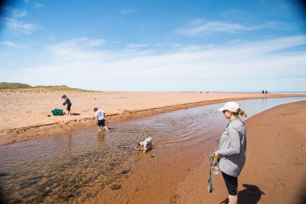 Cousin Shore Beach, an amazing beach just 350m from the villas, with fresh water stream leads right into ocean. One of PEI's best kept secrets!
