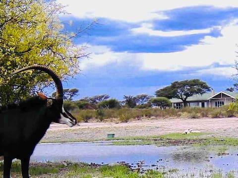 Kalahari Camp