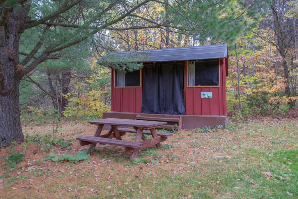 Rustic Cabin Under The Pines Cabins For Rent In