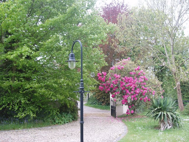 Driveway to garden at front of house