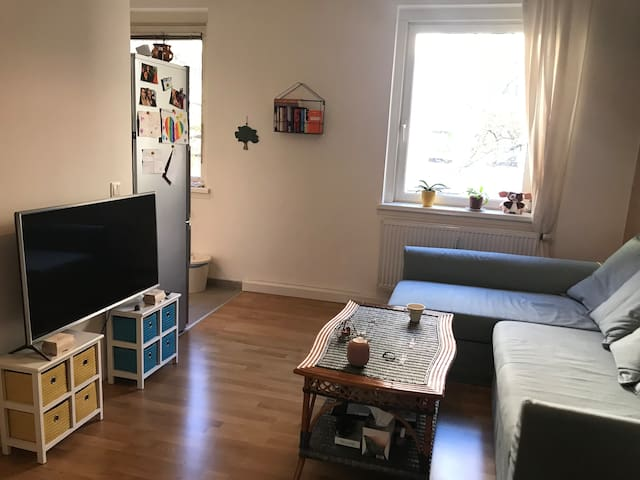 cosy apartment in central location