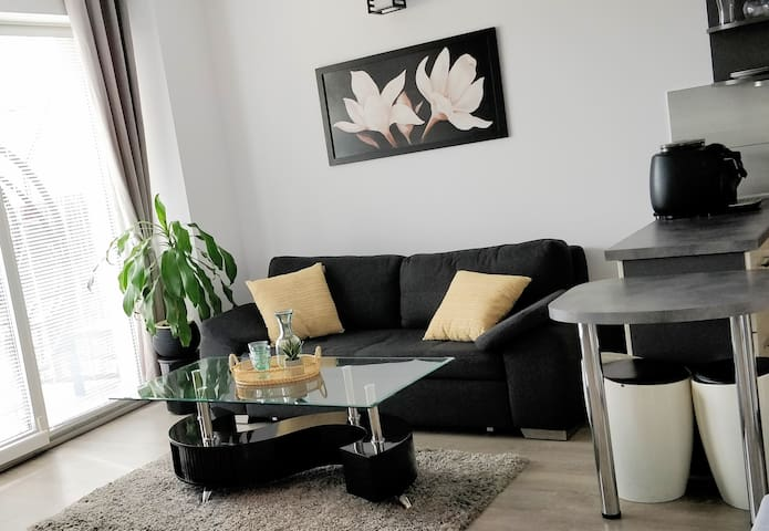 Apartment in the city center, air conditioning
