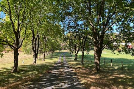 Friendship Creek Farm - Beauty, peace and quiet