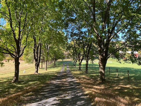 Friendship Creek Farm - Bellezza, pace e tranquillità