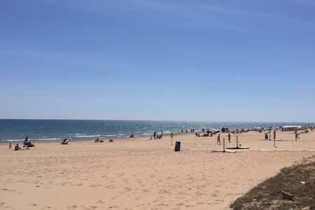 Amazing apartament by the sea - Guardamar del Segura