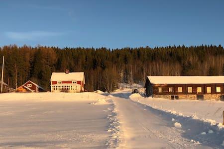 Centralt. Sjöutsikt och huskyfarm.