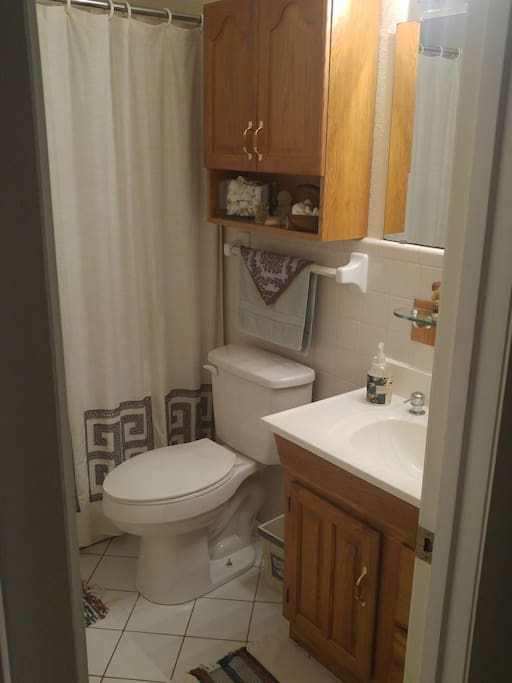 Comfortable bathroom