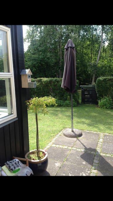 Have / garden