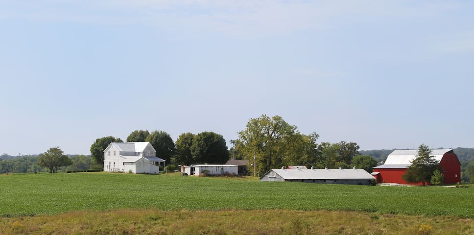 Enjoy our 100-acre farm in the rolling hills of SE Missouri.