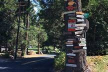 The kinda stuff you don't see in Hollywood, the sign-tree is the local directory
