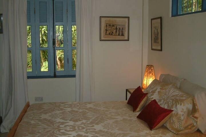 Forest Room in Harmony Villa - Saint Joseph