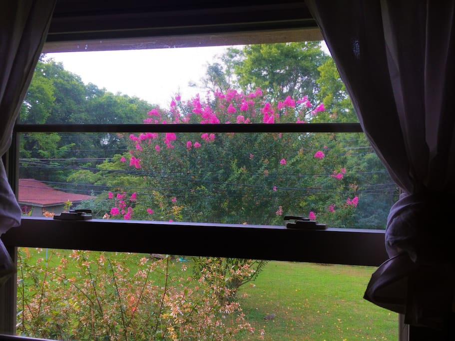 View from one of the windows