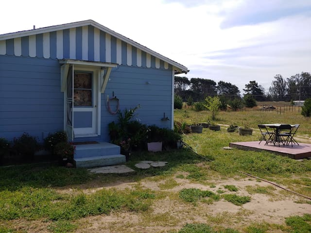 Cottage at Ganja Getaway 420 Farm on the PCH
