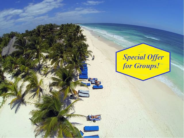 STAY BEACHFRONT HIGH-END - GROUPS - UP TO 30 UNITS