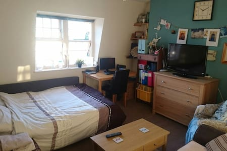 Wonderful large room, ideal location, great hosts. - London - Apartment