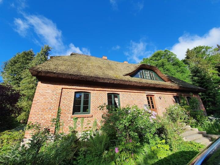 Reetdachhaus Augustenhof