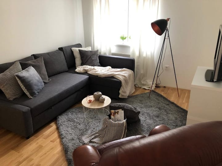 Brand new modern apartment in center