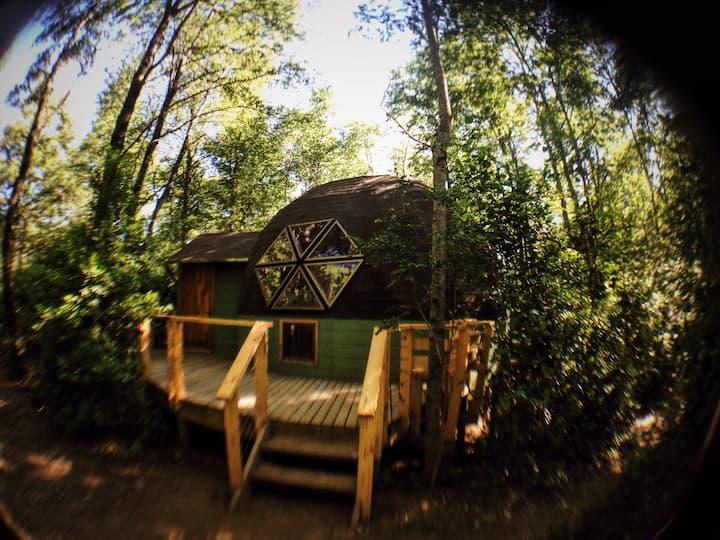 Domos Bosque Vivo Termas de Chillán