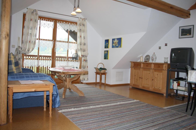Studio-Wohnung - top roof apartment - Donauer im Altmühltal - Ferienwohnungen