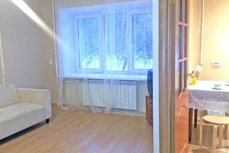 Однокомнатная квартира в центре - Izhevsk