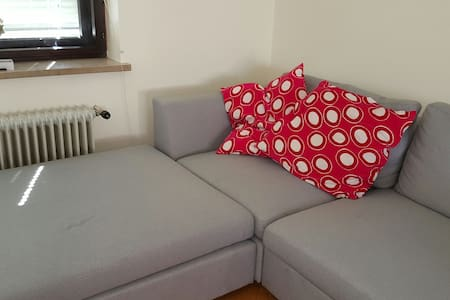 Couch bed,big garden,free parking, - Ljubljana