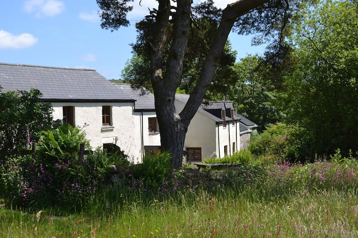 Lower Merripit Cottage in the heart of Dartmoor