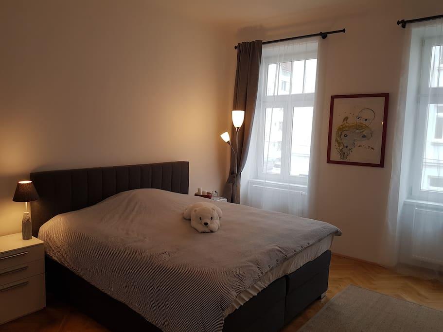 Schlafzimmer mit 2 Fenstern