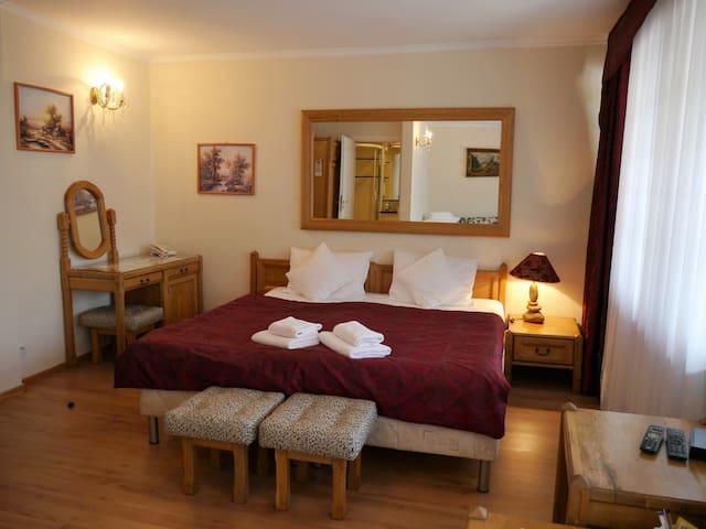 Pokój nr 106 z rozkładaną sofą dla dodatkowych 2 osób. Pokój posiada duży, zadaszony balkon.