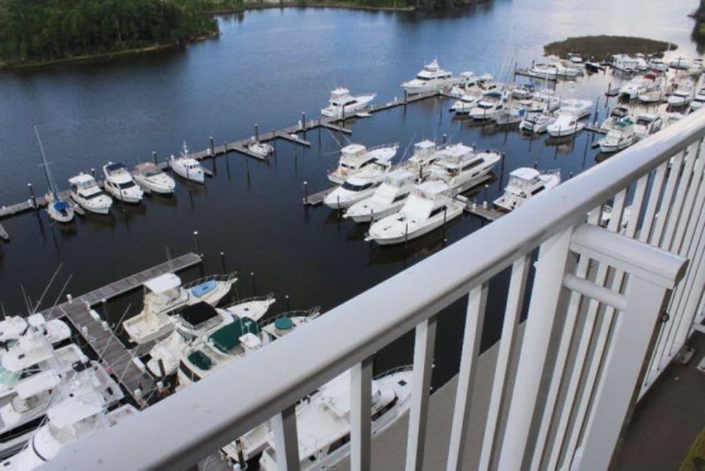 Marina view from balcony