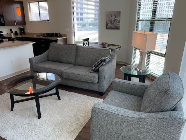 Downtown Condo - Luxury Apt and Excellent Location