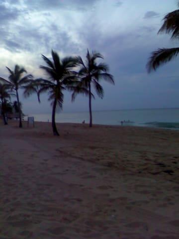 Ocean Park, our local beach. Walking distance.