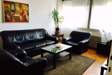 Fully equipped apartment in a great location! - 尼什 (Niš) - 公寓