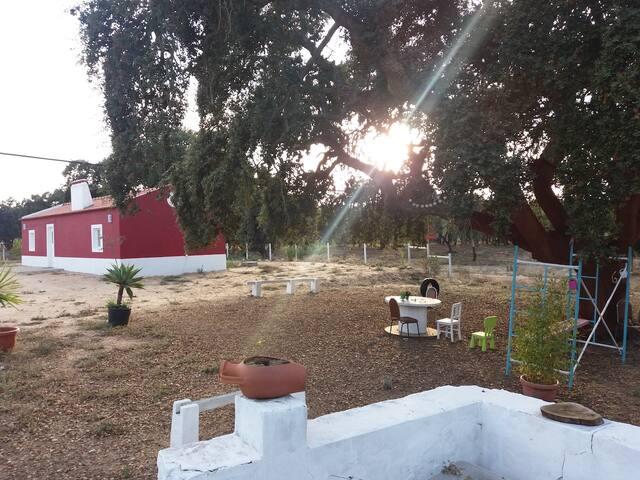 Rando Green Villa, Santiago do Cacem, Setubal - Setubal - House