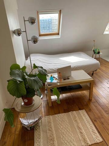 Appartement/Studio Lumineux et central Bastille