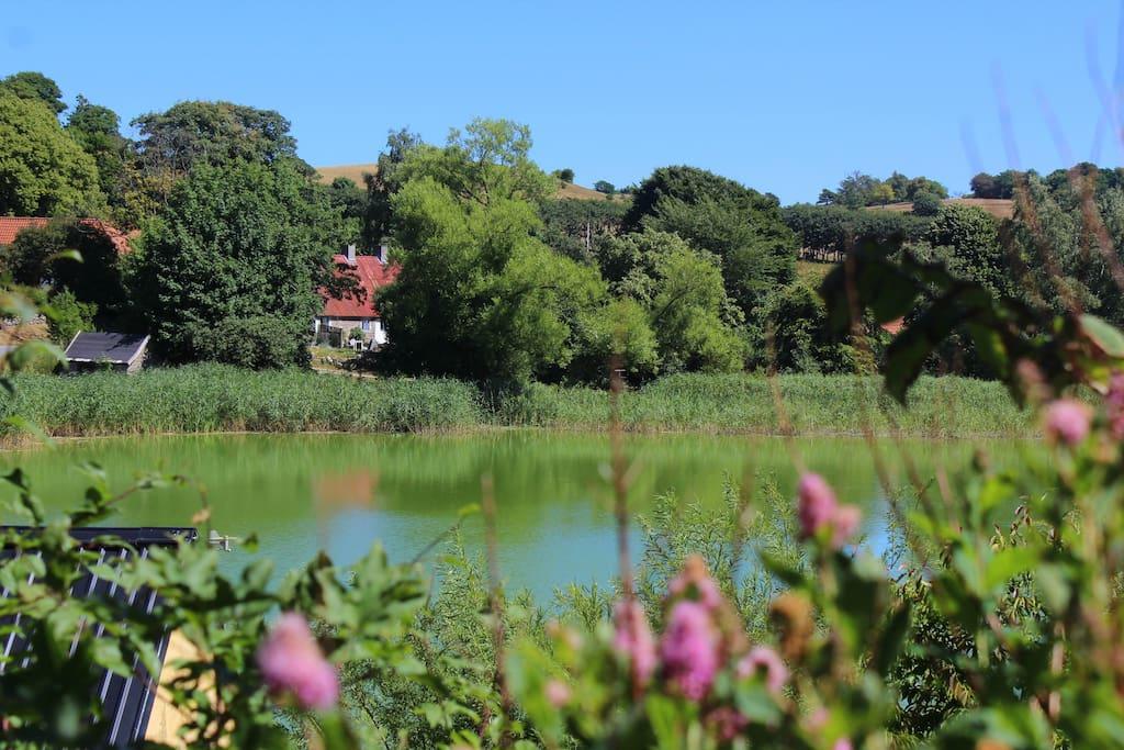 Huset ved søen
