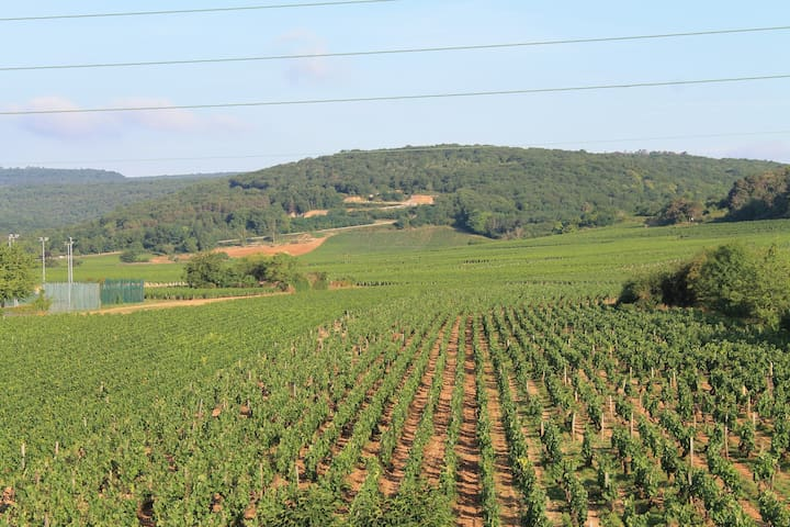 Airbnb Gevrey Chambertin Holiday Rentals Places To Stay