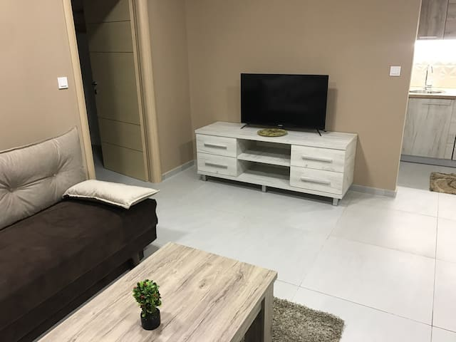 Brand new ground floor apartment