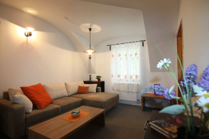 Charming Apt 1797 A.D. center 3min - Liberec - House