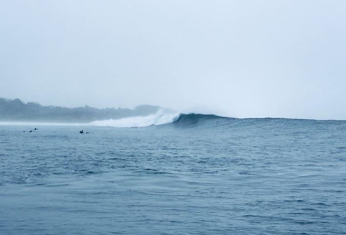 Montauk Surf, Scuba, Explore