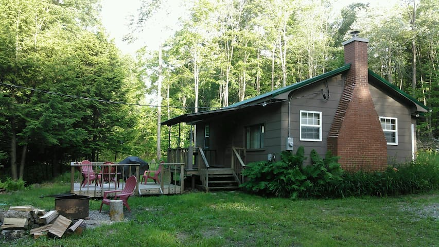 Salmon Creek Cabin - Allegheny National Forest