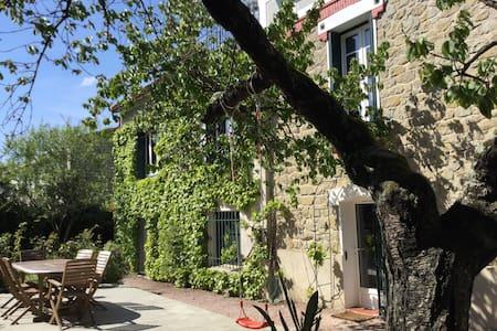 gite de charme centre carcassonne - Townhouse