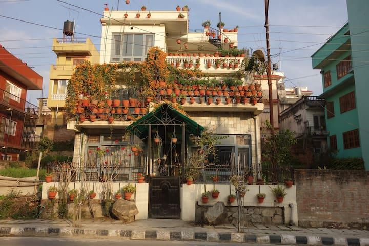 Anjana's Hanging Garden
