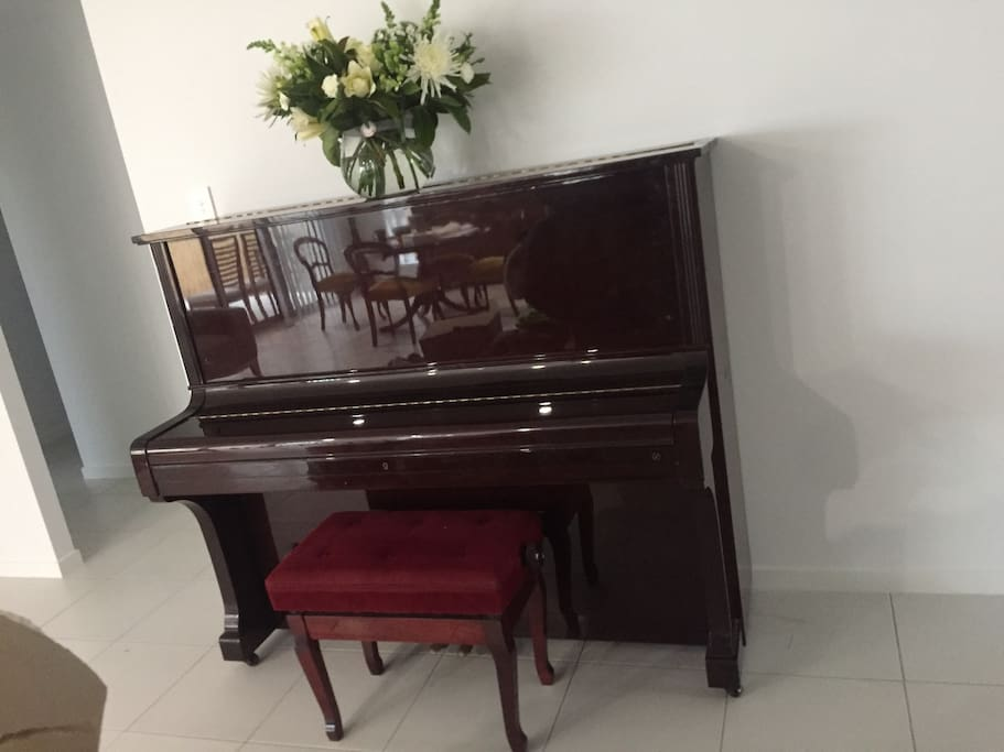Feel free to play piano of a evening