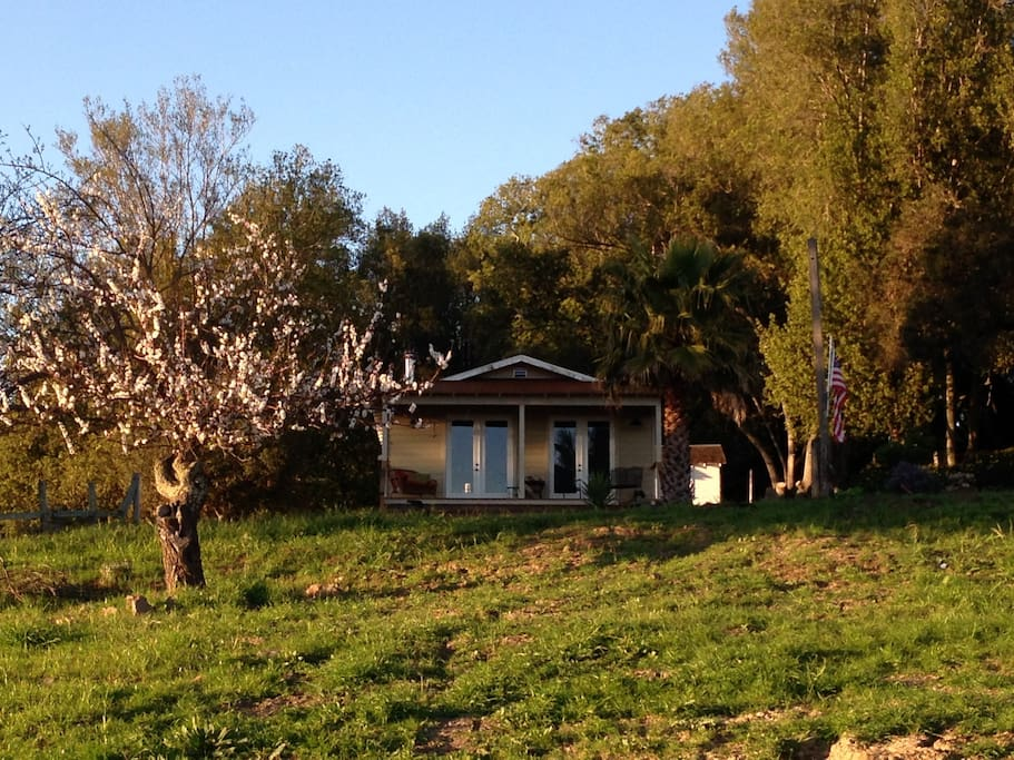 The Farm House from far off in the orchard - early spring 2014